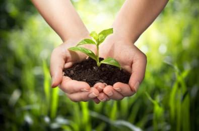 ROLLENLAND die Umwelt schonen