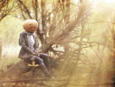 ROLLENLAND Herbst
