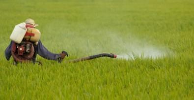 ROLLENLAND pestizid vernichter