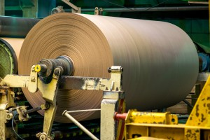 Papierrolle in der Naturpapierherstellung