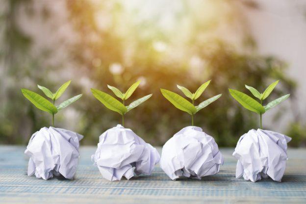 Kleine Pflanzen, die aus vier Papierkugeln wachsen als Sinnbild für Nachhaltigkeit