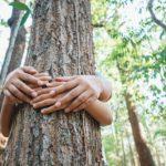 Trotz Kassenbon-Pflicht auf die Umwelt achten