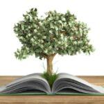 Umweltfreundliches Thermopapier – Nachhaltigkeit für Ihr Unternehmen